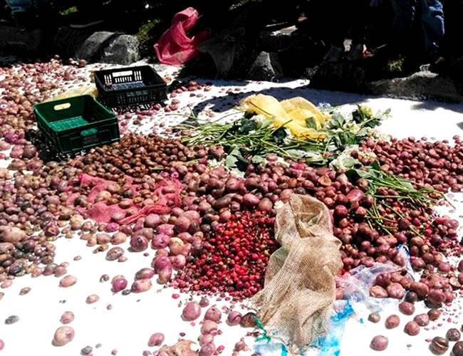 Toneladas de comida se están perdiendo por el Paro Camionero | Foto: BluRadio