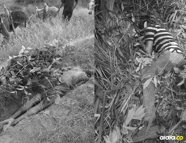 Gustavo Enrique García Rada, de 52 años, fue asesinado de varios machetazos y  Edwin Manuel Julio Polo fue asesinado a garrotazos.