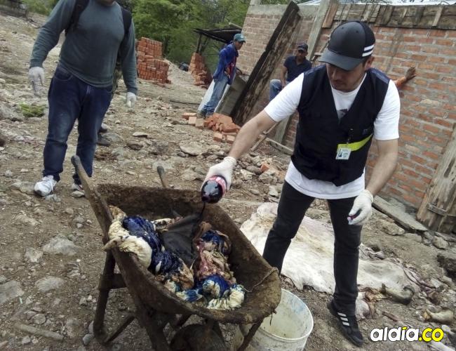 Buena parte de las vísceras que fueron encontradas estaban en mal estado dijeron los funcionarios del Invima.