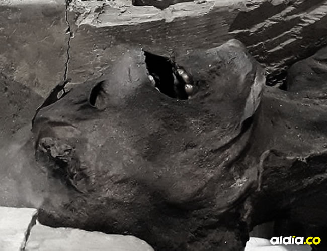 El Museo Egipcio de El Cairo exhibe la 'momia aulladora' | AFP