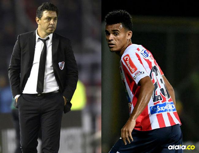 Marcelo Gallardo, DT de River Plate, afirmó que sí hay interés por Luis Díaz, pero que de igual forma no hay nada concreto en torno a su llegada.