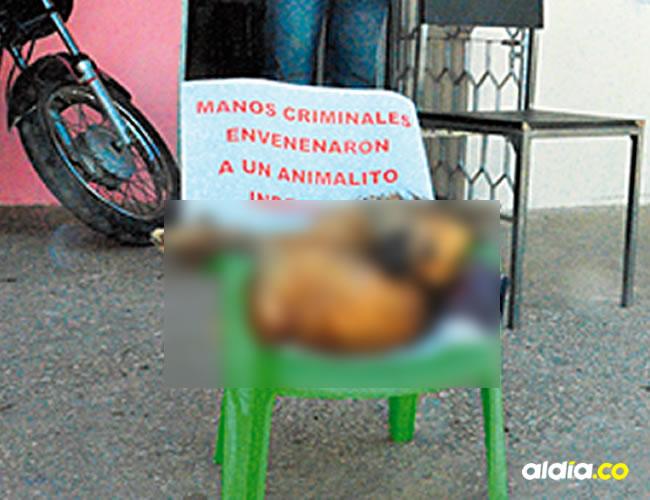 La comunidad de Los Pioneros está indignada y espera que las autoridades investiguen esta situación.   AL DÍA