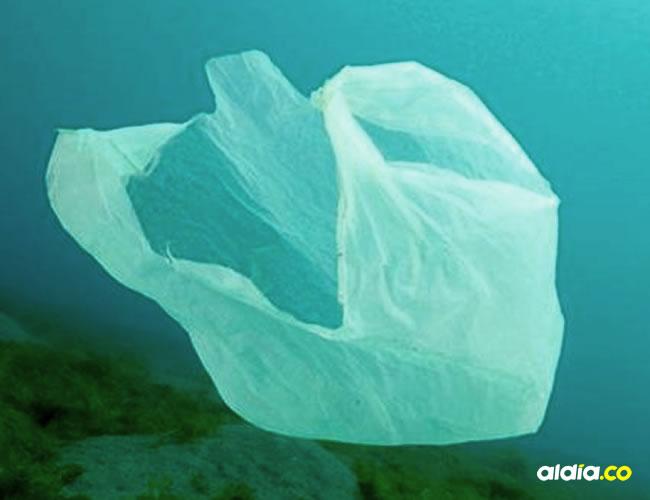 Las bolsas plásticas son unos de los problemas más graves de la ecología mundial | Al Día