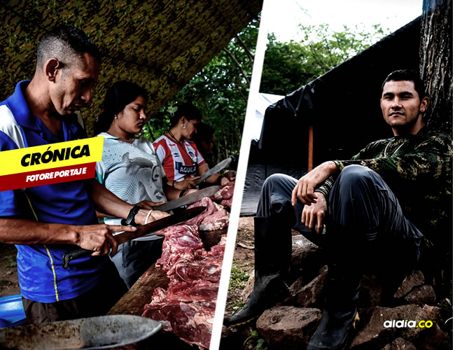 Guerrilleros de las Farc viven en campamentos esperando salir del limbo en el que quedaron tras la victoria del No en el Plebiscito | César Bolívar