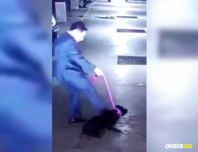El hombre pateó cuatro veces a un perrito en el estacionamiento de un edificio en Bogotá   Captura