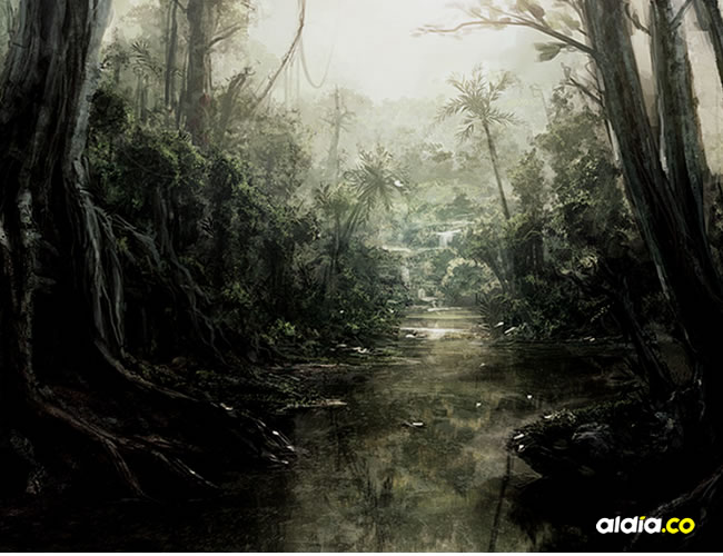 La selva que guarda espíritus que aterroriza a los visitantes   Archivo