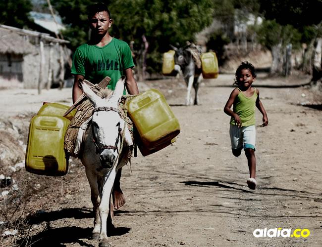 Los habitantes de la zona rural de Morroa piden más presencia de la Policía para que indague qué está pasando con sus burros que a lo largo de los años se han convertido en su principal medio de transporte | José Luis Cruz