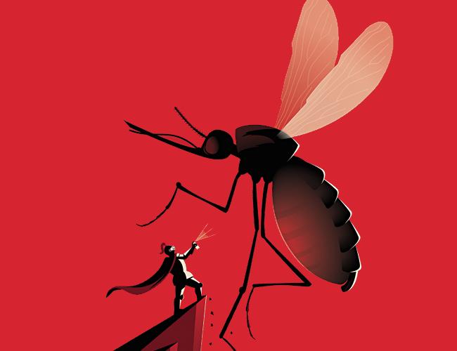 Existen miles de formas para ahuyentar al mosquito y en ALDIA.CO te contamos cómo |Foto: Hireanillustrator.com