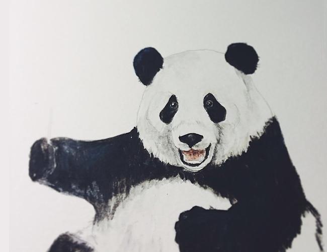 El oso panda es el animal nacional de China, pero a pesar de eso aún está en peligro de extinción |Foto: Mister Peebles -Tumblr