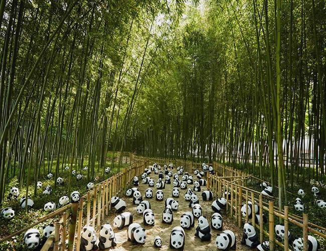 La exhibición ha recorrido varios países del mundo y ahora está en Tailandia. | Foto: Facebook