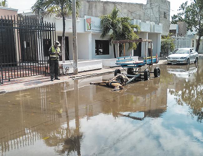 Un cable de alta tensión que se cayó por los fuertes vientos y la lluvia presentada el sábado en la noche ocasionó la mañana del domingo la muerte del caballo que pasaba por esta calle de Riohacha.