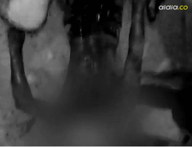 Nelson Rafael Ruiz Caballero, de 20 años, asesinado con un pico de botella en el corregimiento de Aguada de Pablo.    Captura de pantalla