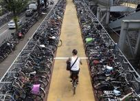 En Holanda la mayoría de la población llega a sus lugares de trabajo en Bicicleta | Archivo