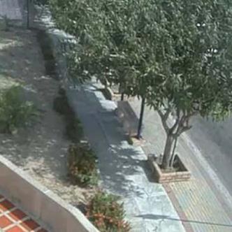 Secuencia de videos sobre la calle 100 en Miramar.