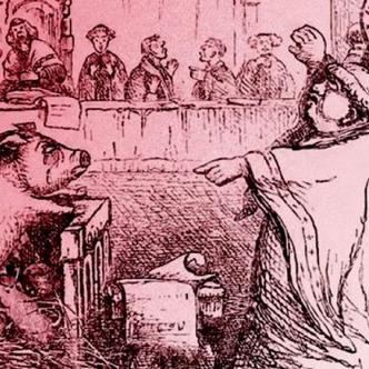 """Evans registró también la historia de los cerdos que eran acusados en las aldeas medievales    Ilustración del """"Libro de los días"""", (1863)."""