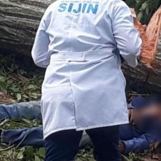El árbol cayó encima del hombre y lo mató de manera instantánea. Los Bomberos de Corozal rescataron el cadáver.