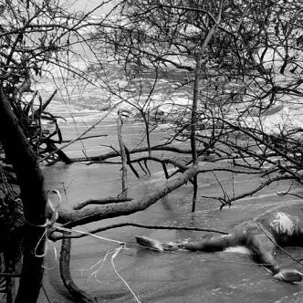 El cadáver de la mujer sin identificar fue encontrado frente a las costas del kilómetro 19 de la Troncal del Caribe | Foto: Al Día