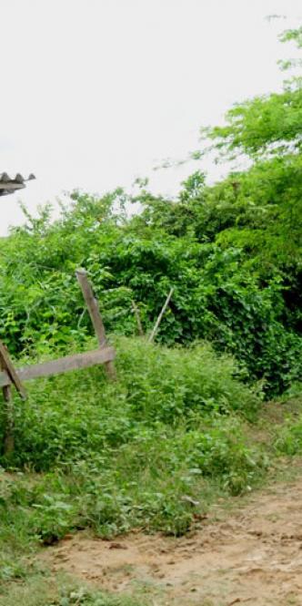 Armadio Palacios Ibargüen, de 49 años,  era oriundo de Bajo Baudó en Chocó | Al Día