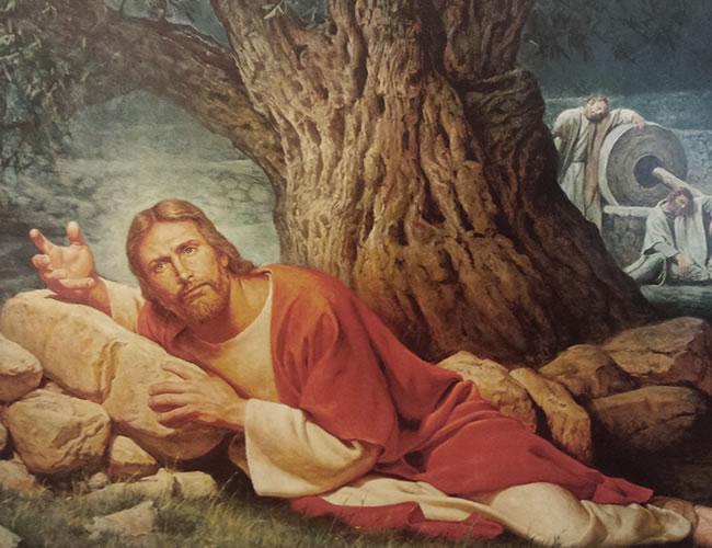 Tal vez sea raro escuchar uno de estos fragmentos de la biblia en la iglesia | Foto: Reddit