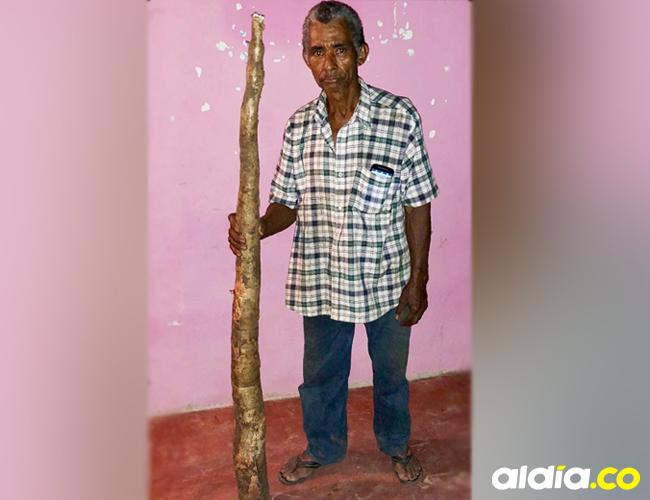 David Lobo Mejía muestra la yuca de gran tamaño que arrancó en su parcela.